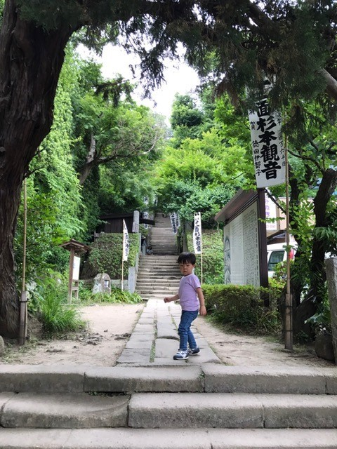Sugimotodera