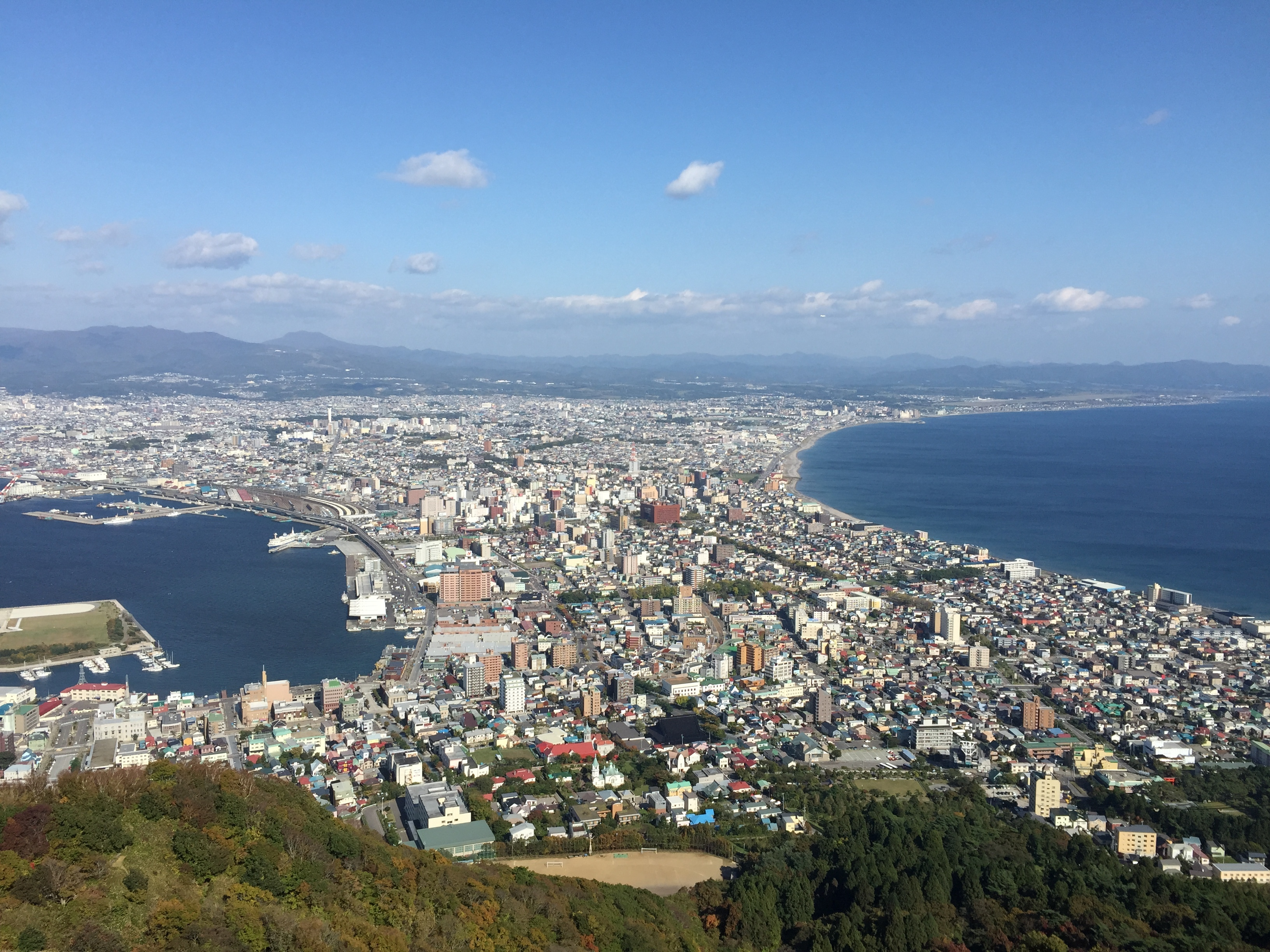 View from mt. hakodate